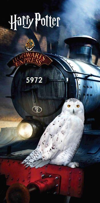 """Harry Potter """"Hedwig"""" osuška obrázek 1"""