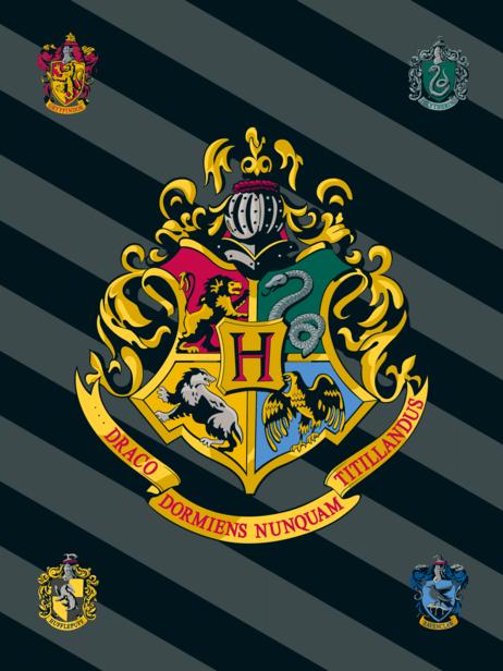 """Harry Potter """"HP067"""" fleecová deka obrázek 1"""