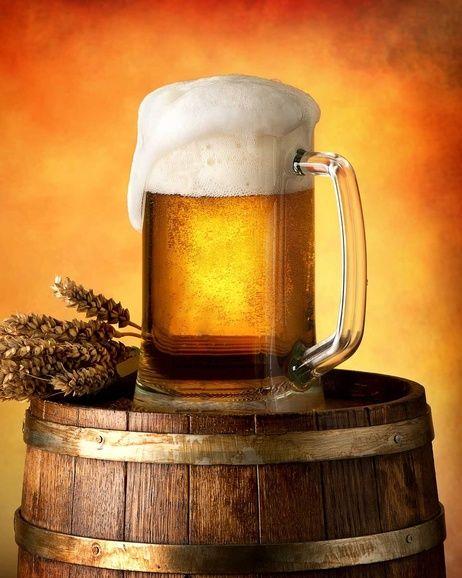 Pivo mikroflanelová deka obrázek 1
