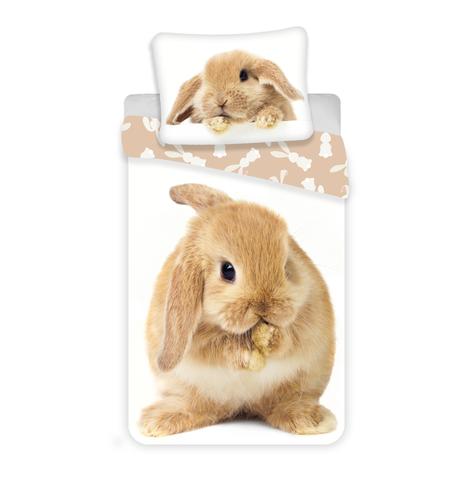 """Bunny """"Brown"""" image 1"""