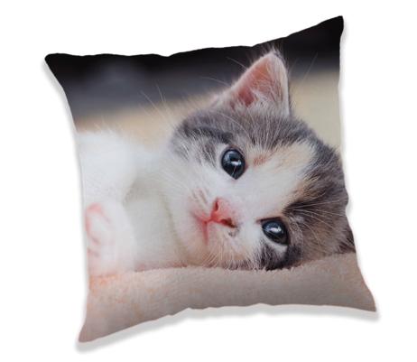 """Koťátko """"Kitten"""" polštářek obrázek 1"""