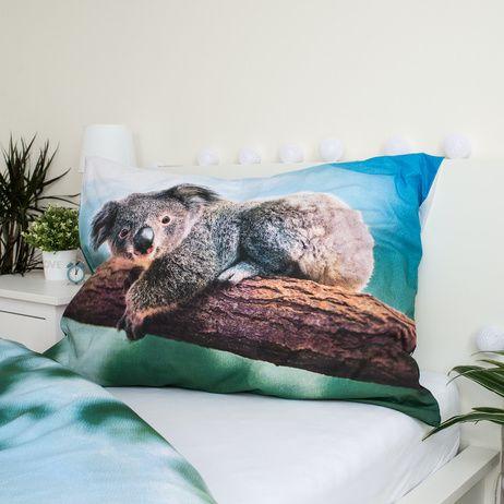 Koala obrázek 4
