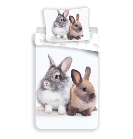 "Bunny ""Friends"" image 1"