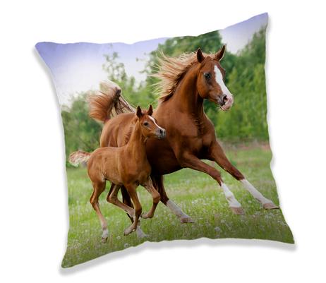 """Kůň """"Brown"""" polštářek obrázek 1"""
