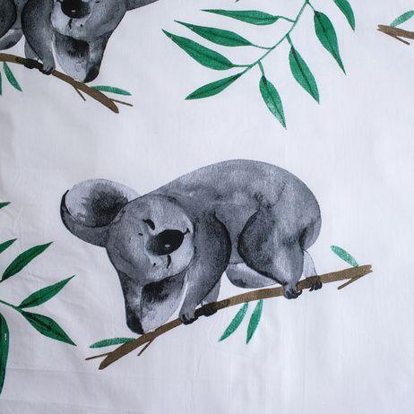 Koala obrázek 5