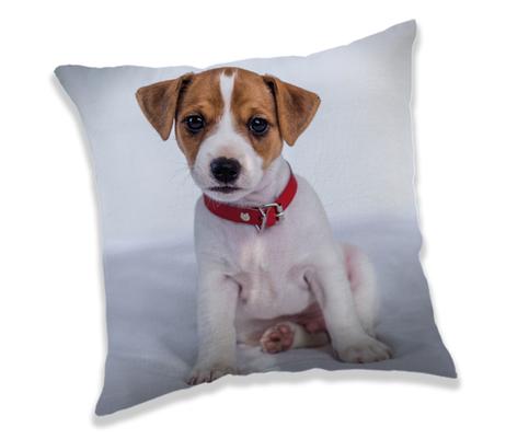 """Dog """"03"""" cushion image 1"""