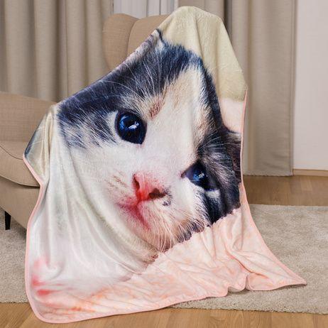 Koťátko mikroflanelová deka obrázek 3