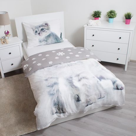 """Kitten """"Grey"""" image 3"""
