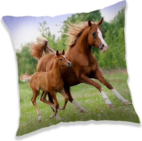 "Kůň ""Brown"" polštářek"