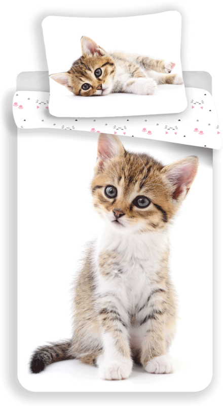 """Kitten """"White"""""""